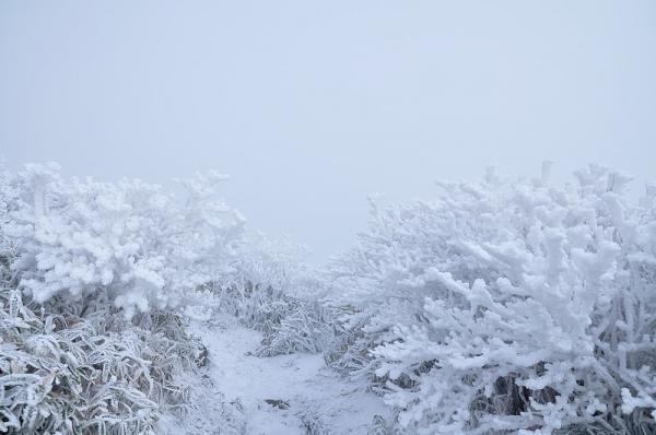 8寒風山16.12.24