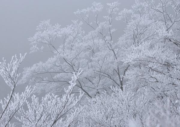 9寒風山16.12.24