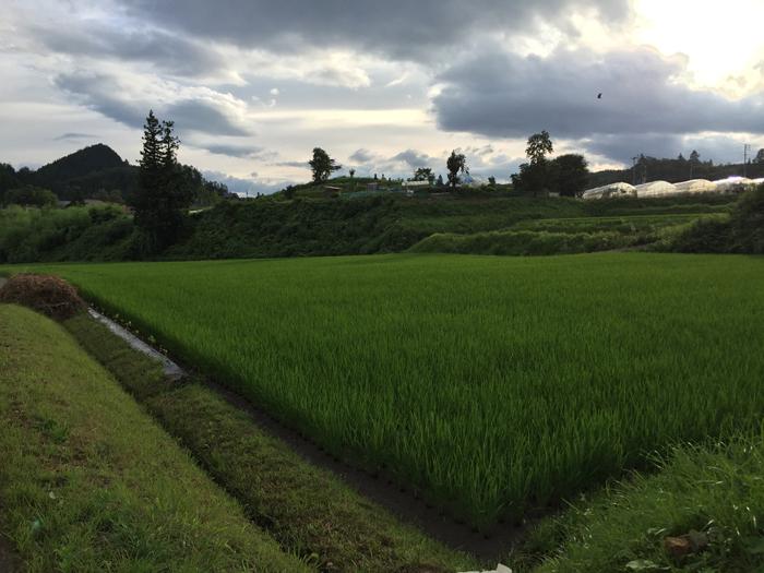 農繁期 2016 夏  ホッ!と一息