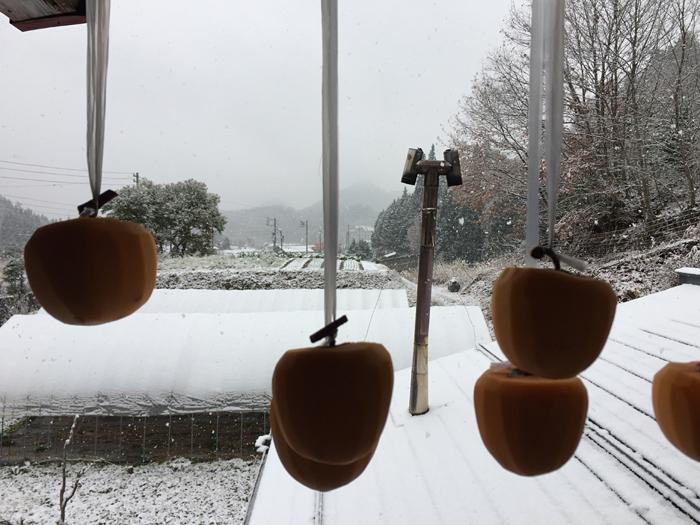 初雪 2016 初冬 3