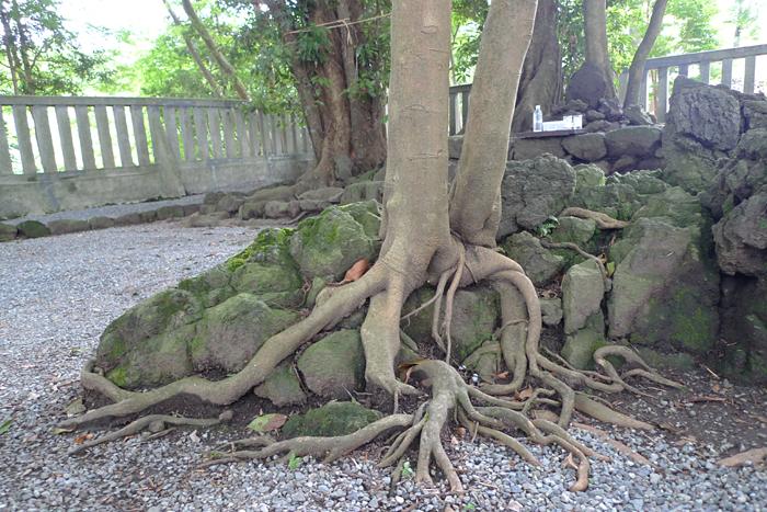 駿河の神社  山中浅間神社  14