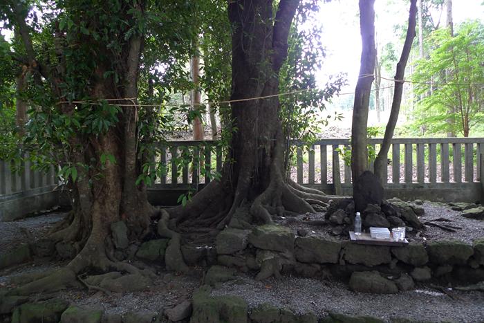 駿河の神社  山中浅間神社  15