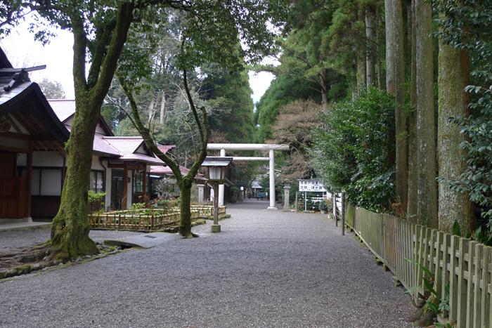 日向の国の神社  天岩戸神社  10