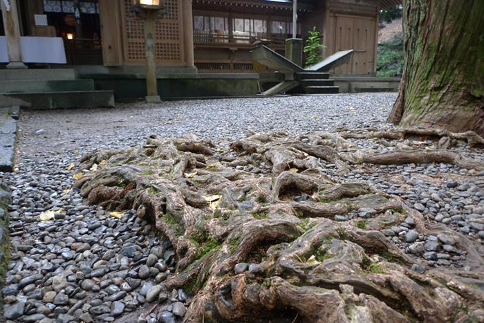 日向の国の神社  高千穂神宮  8
