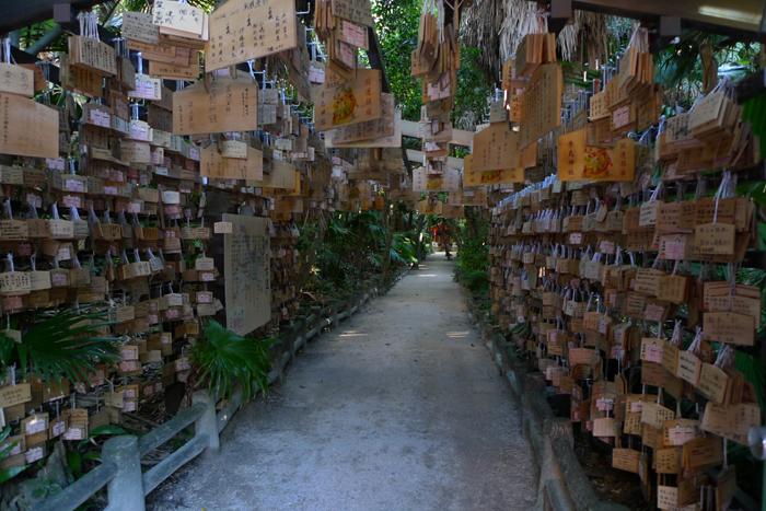 日向の国の神社 青島神社  34