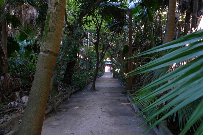 日向の国の神社 青島神社  38