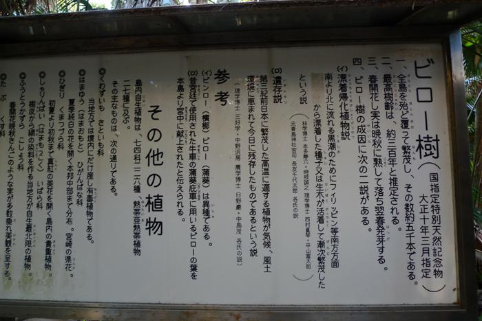 日向の国の神社 青島神社  39