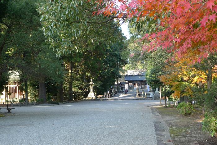 日向の国の神社 都農神社  4