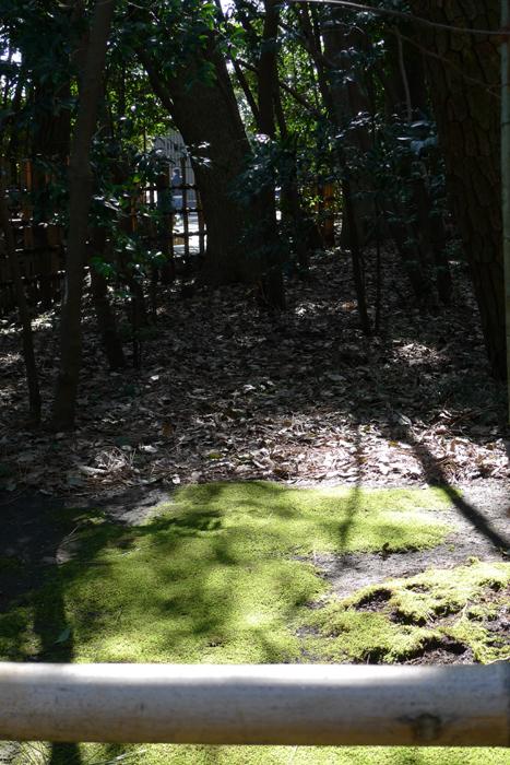 相模の国の神社  寒川神社  7