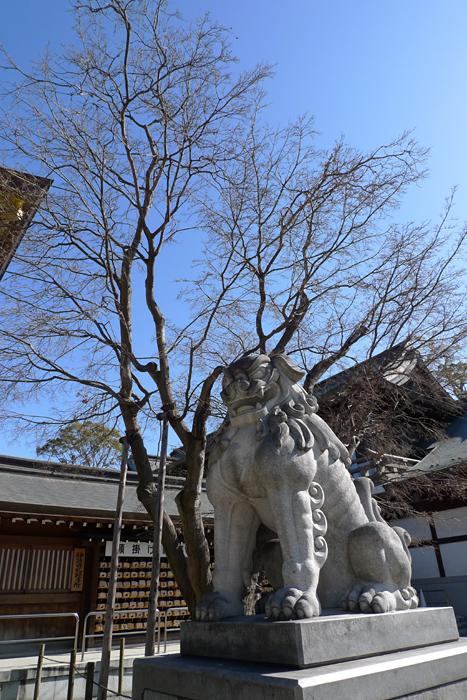 相模の国の神社  寒川神社  15