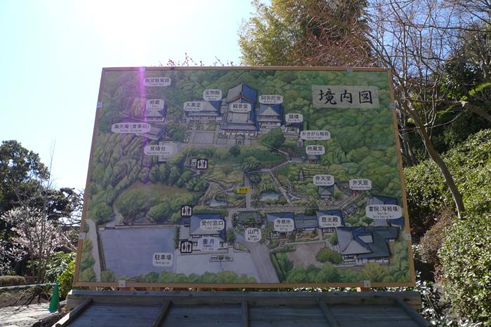 鎌倉 長谷寺  1