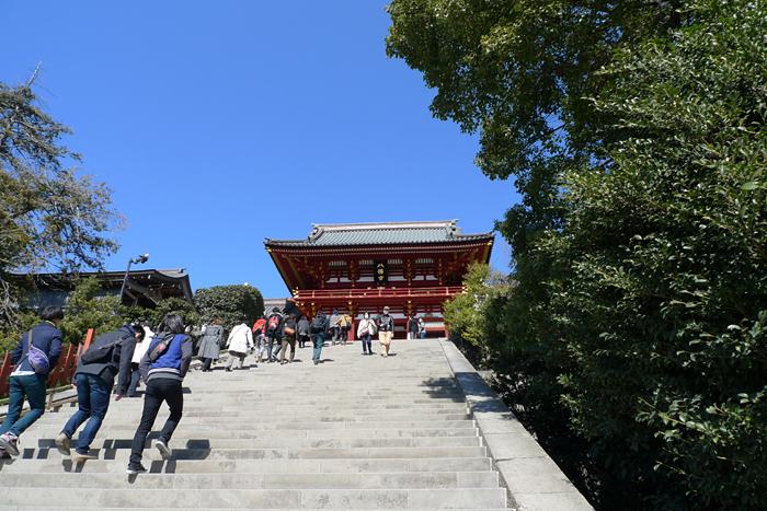 相模の国の神社 鶴岡八幡宮  9