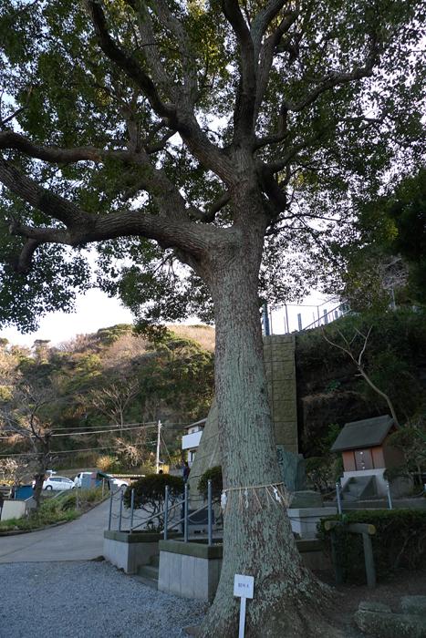 相模の国の神社  走水神社  9