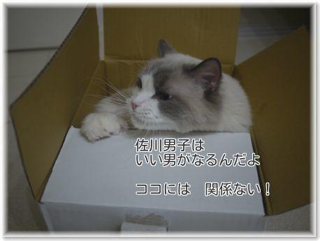 001-sagawapEfxVWksNLxqCEm1481989498_1481989560.jpg