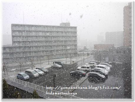 001-4月の雪160412-0411