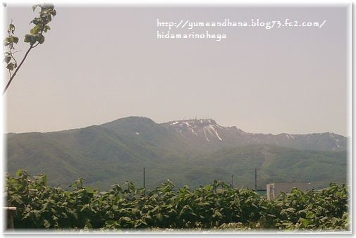 001-手稲山160523-1