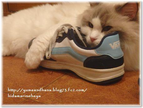 001-大きな靴160609-4