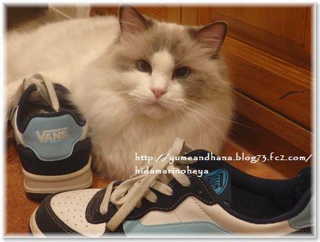 001-大きな靴160609-6