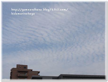 001-うろこ雲160902-1453