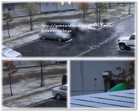 001-雪161020-1649