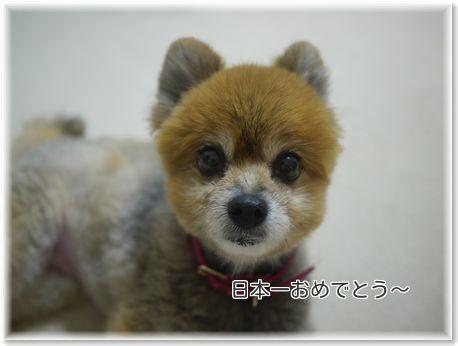 001-日本一sApEmjChMzt7Pt81477757441_1477757467