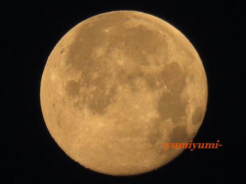 お月さま4