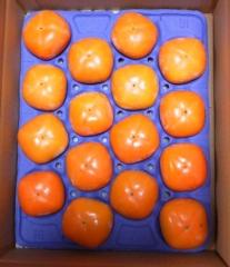 日本エスリードからの柿