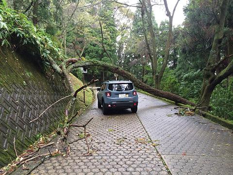 台風被害a10-06 8 39 56