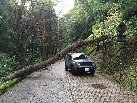 台風被害b10-06 8 40 49
