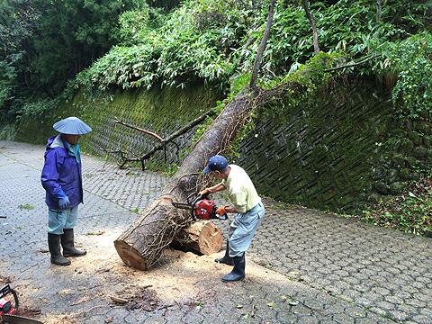 台風被害c10-06 9 07 55