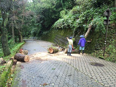 台風被害d10-06 9 14 52