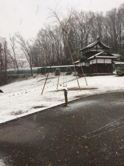 1210雪
