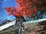 興福寺南塀