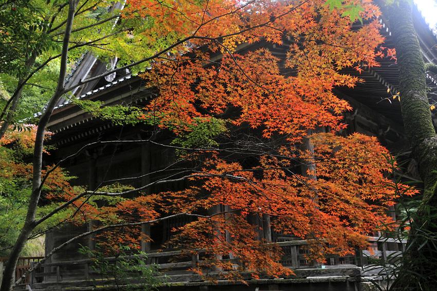 金蔵寺02