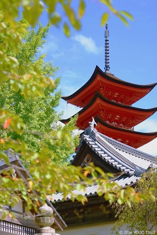 絶景探しの旅-0025 厳島五重塔(広島)2