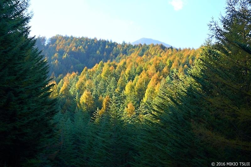 絶景探しの旅-0027 天女山への山道から(八ケ岳)
