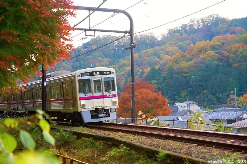 絶景探しの旅 - 0047 秋を駆け抜ける(京王高尾線/八王子)