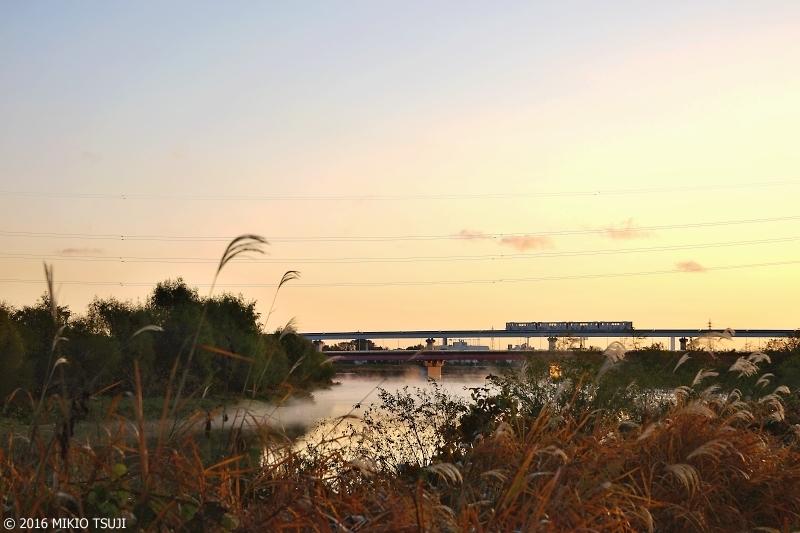 絶景探しの旅 - 0050 晩秋の多摩川の朝 (東京都 日野市)