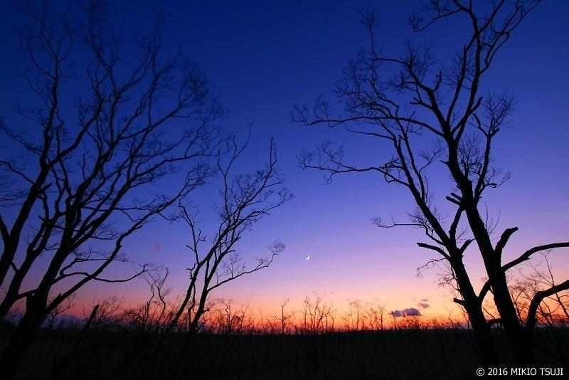 0062 冬のマジックアワー (釧路湿原国立公園)