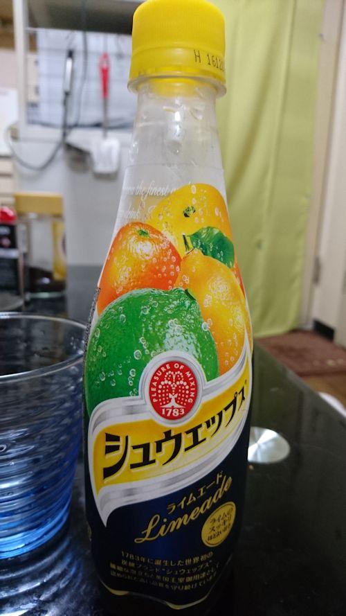 blog20160819g.jpg