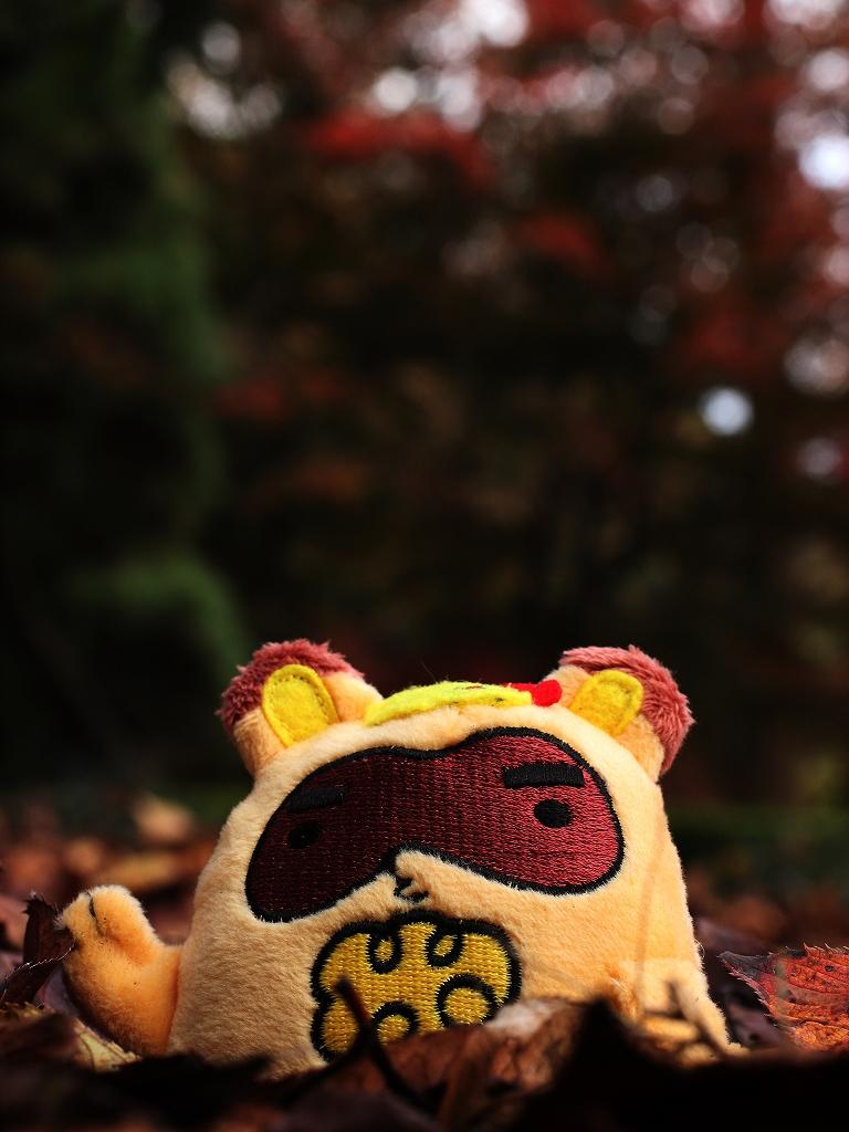 soreiyuichigo!46.jpg