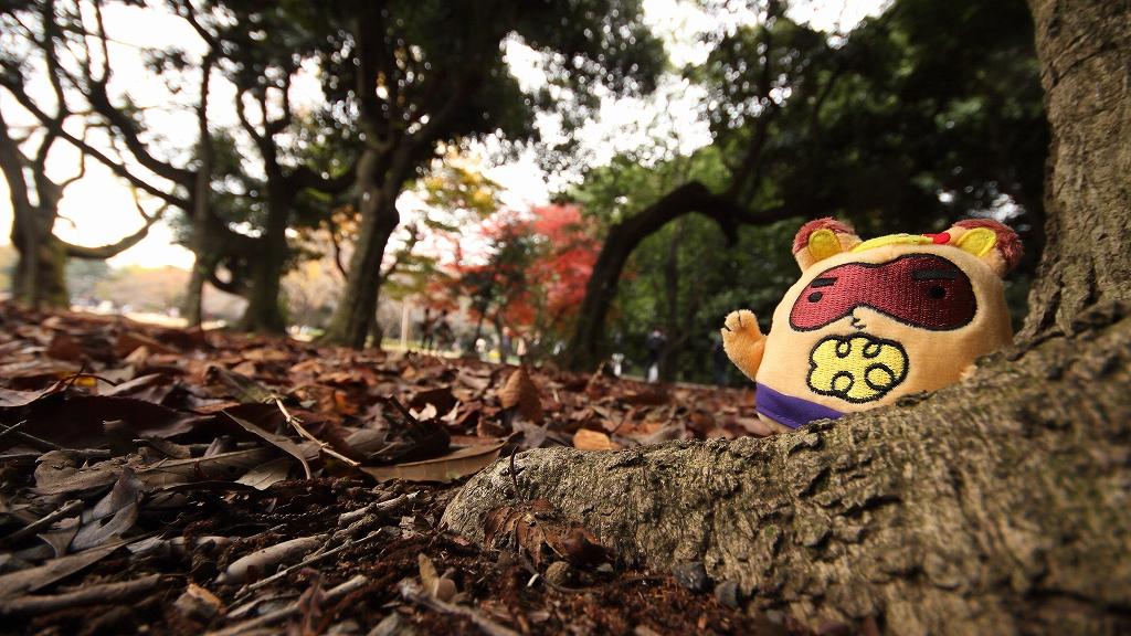 soreiyuichigo!63.jpg