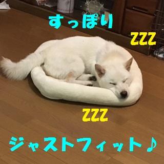 image003-1.jpg