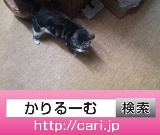 moblog_141b4693.jpg