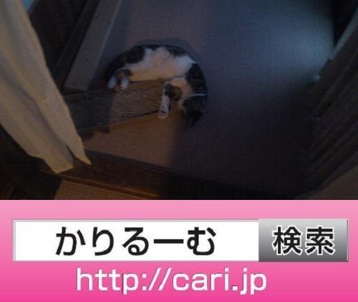 moblog_40218ad9.jpg