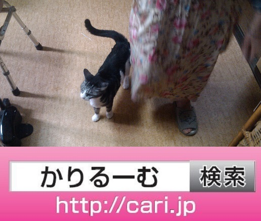 moblog_5aeef4c9.jpg