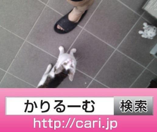 moblog_72222cdf.jpg