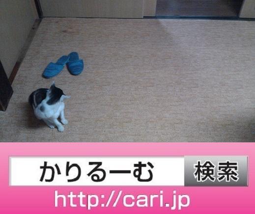 moblog_b150953a.jpg