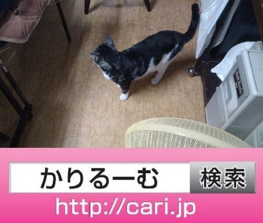 moblog_d1d07c9e.jpg