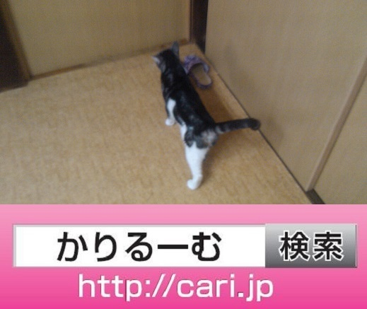 moblog_e9ebd332.jpg